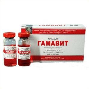 Иммуномодулирующий препарат